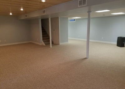 millerton-basement